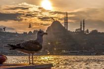 Istanbul (avionom)